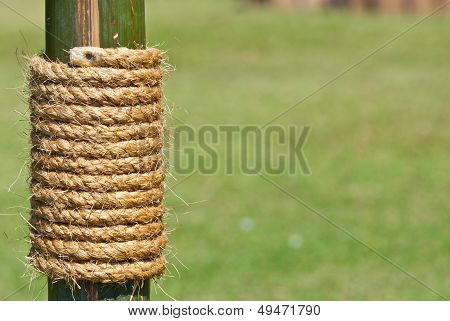 Large Rope On Bamboo Tree With Green Grass As Background