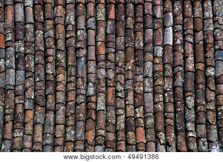 Terra Cotta Roof Tiles
