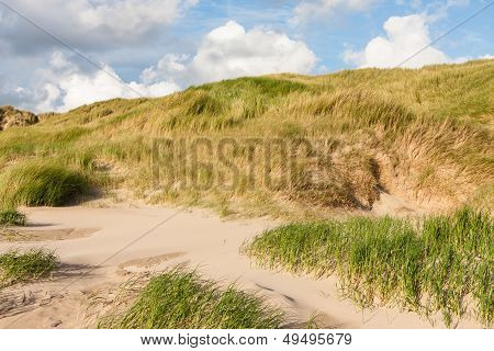 Dunes At The North Sea