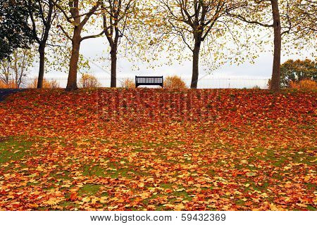 Autumn in Colchester Essex UK