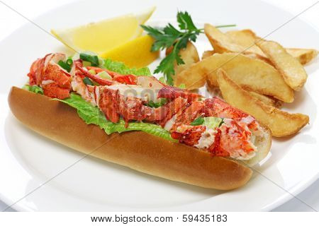 lobster roll sandwich, american food