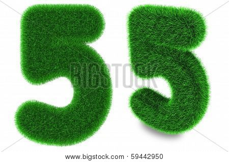 Number Five Made Of Grass