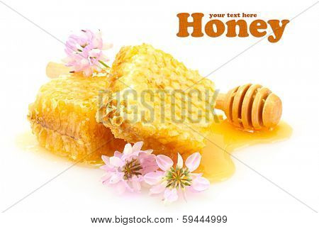 Golden honeycombs, wildflowers and wooden drizzler with honey isolated on white