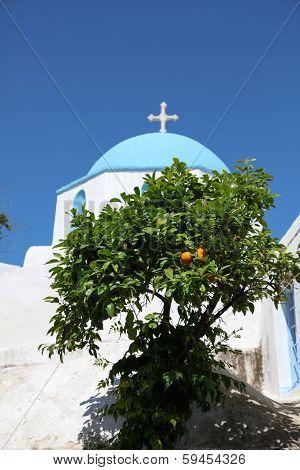 Church And Orange Tree On Paros Island