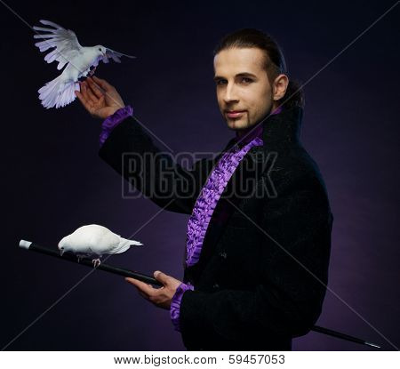 Young handsome brunette magician man in stage costume with his trained white doves