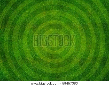 Green grass texture from a sports field with circular pattern top view