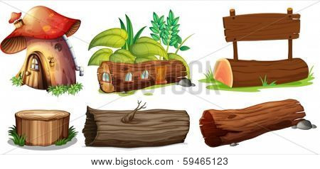 Illustration of the different uses of woods on a white background