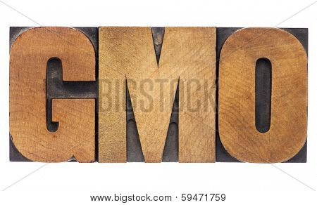 GMO (genetically modified organism) acronym  - isolated text in vintage letterpress wood type