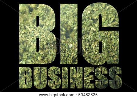 Marijuana, American Drug Business
