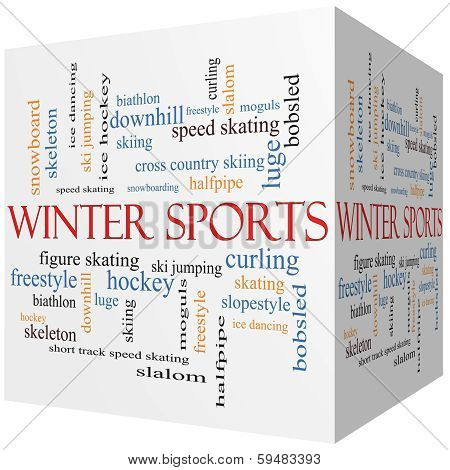 Winter Sports 3D Cube Word Cloud Concept