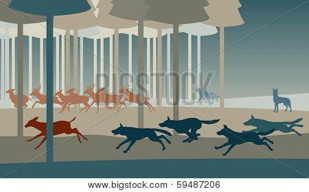 Editable vector illustration of a pack of wolves hunting deer in a forest