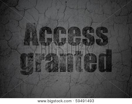 Protection concept: Access Granted on grunge wall background