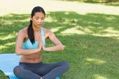 image of namaste  - View of a sporty young woman in Namaste position with eyes closed at the park - JPG