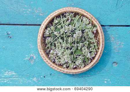 Balm Lemon-balm Mint Herbal Plant Leaves In In Wooden Plate