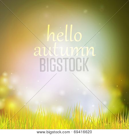 Autumn or summer abstract nature background