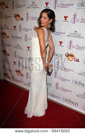 LOS ANGELES - AUG 1:  Ana Ortiz at the Imagen Awards at the Beverly Hilton Hotel on August 1, 2014 in Los Angeles, CA