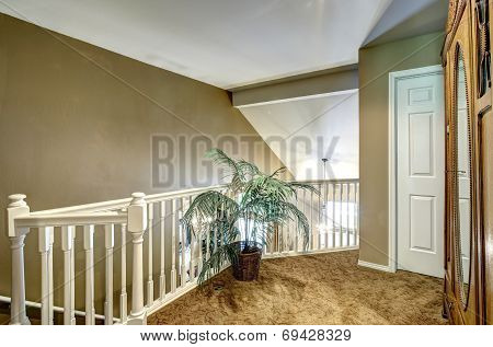 Upstairs Deck With Balustrade And Palm Tree
