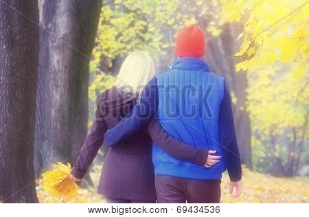 Loving couple walking arm in arm in a beautiful autumn park. Soft effect. Color toning