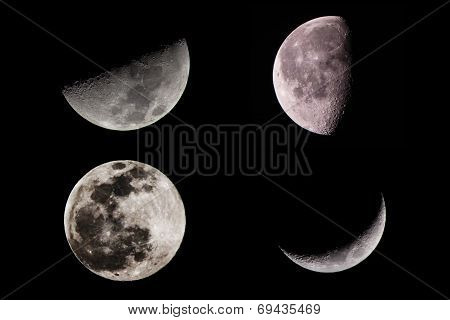 Moon Phases And Half Moon And Full Moon.