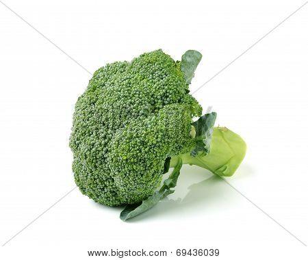 Broccoli Isolated On White Ackground