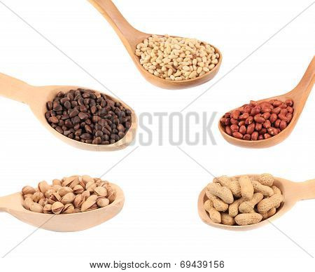 Collage of different nuts in spoons.