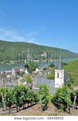 Assmannshausen,Ruedesheim,Rhine River