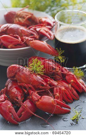 Swedish Crayfish