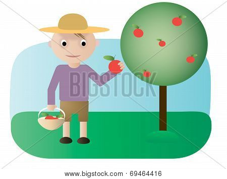 Gardener with apples
