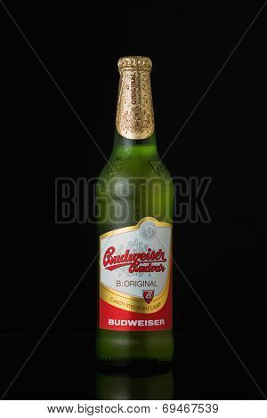 Sarajevo, Bosnia and Herzegovina - August 02, 2014: Budweiser beer bottle, on black. Budweiser is made by Budweiser Budvar in Czech Republic.