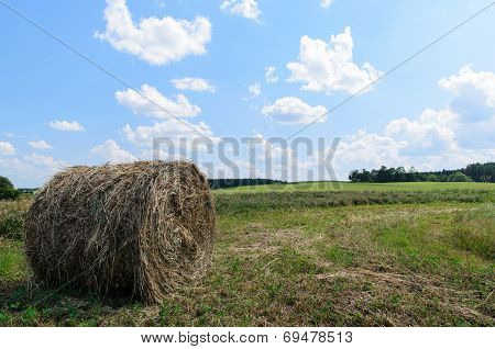 Round Bale (hay) On Sky Background