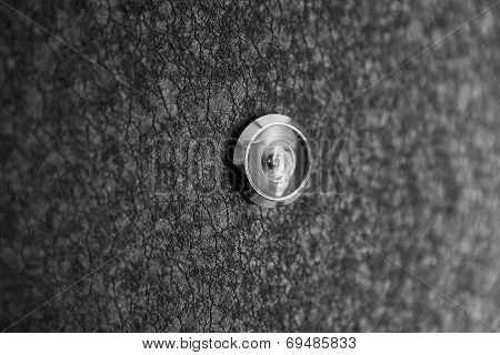 Silver peephole in luxury black iron door
