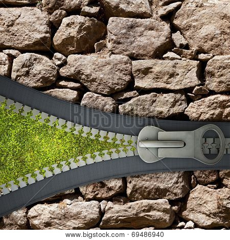 Conceptual image with opened zipper and green grass