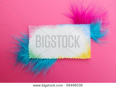 Beautiful decorative feathers and blank card on pink background