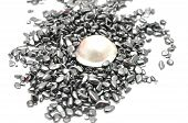 picture of hematite  - Detailed and colorful image of white pearl - JPG