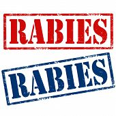 image of rabies  - Set of grunge rubber stamps with text Rabies - JPG