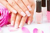 pic of manicure  - Manicure and Hands Spa - JPG