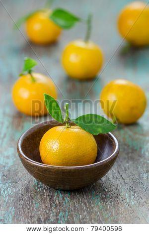 Oranges (citrus Japonica Thunb) In A Ceramic Dish