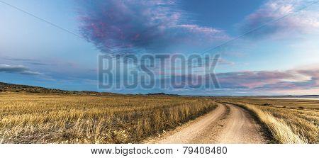 Dirt Road Near Gallocanta Lagoon In, Spain
