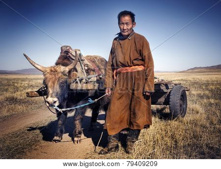 Man walking with a bull with a cart.