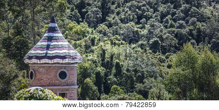 Tower in the forest