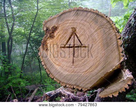Appalachian Trail Symbol
