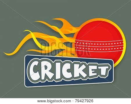 Red cricket ball in flame with text cricket, sports concept.