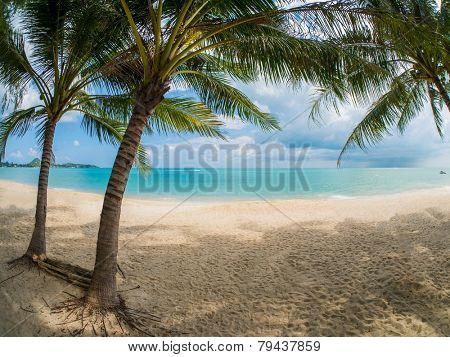Tropical beach of Koh Samui island in Thailand