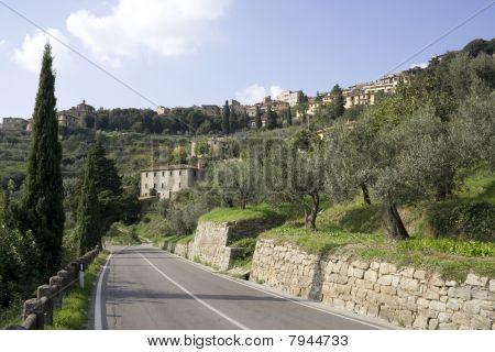 Road to Cortona