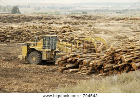 Moving Logs 1