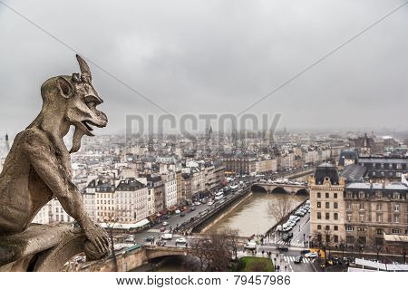 Paris skyline in cloudy day from the top of Notre Dame Cathedral