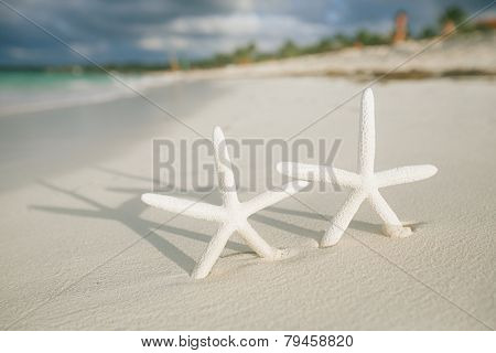 white starfish in sea wave live action, blue sea and clear water, shallow dof