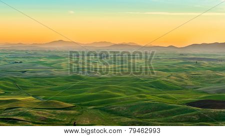 Beautiful Morning and rolling hills In Palouse, Washington