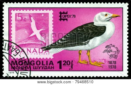 Vintage  Postage Stamp. Great Black- Backed Gull And Canada.