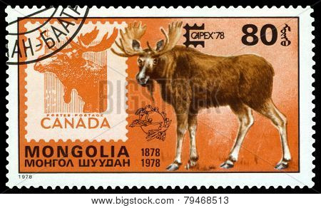 Vintage  Postage Stamp. Moose And Canada.